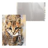 Папка-файл  20 48688 Wild Cat Erich Krause {Россия}